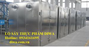 Lò sấy thực phẩm DIWA